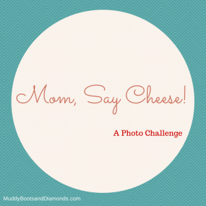 Mom Say Cheese Blog Link Up