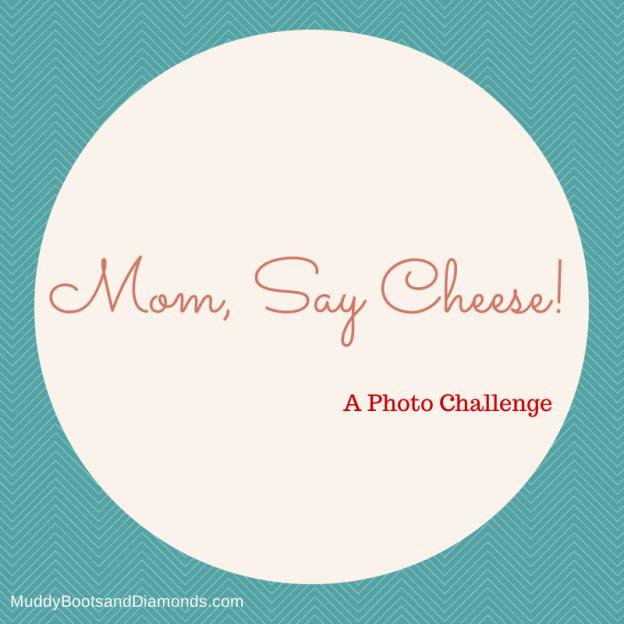 Mom Say Cheese Blog Link Up